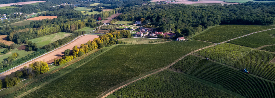 The vineyards of Valmer from the sky © Charly's Drone