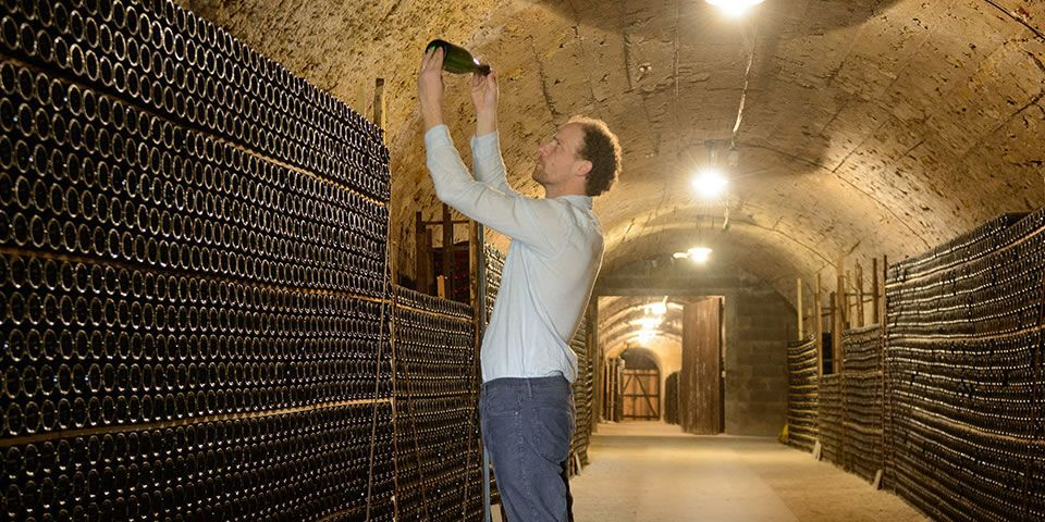 Jean de Saint-Venant in the cellars of Valmer