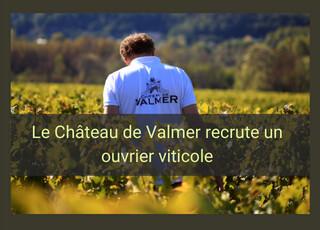 Valmer recherche un(e) ouvrier(e) viticole